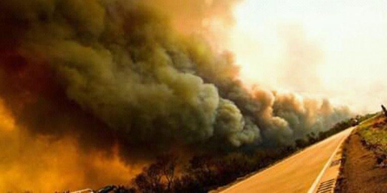 Para apagar el incendio en la Chiquitanía: Declararla Zona de Desastre y Abrogar el Decreto 3973